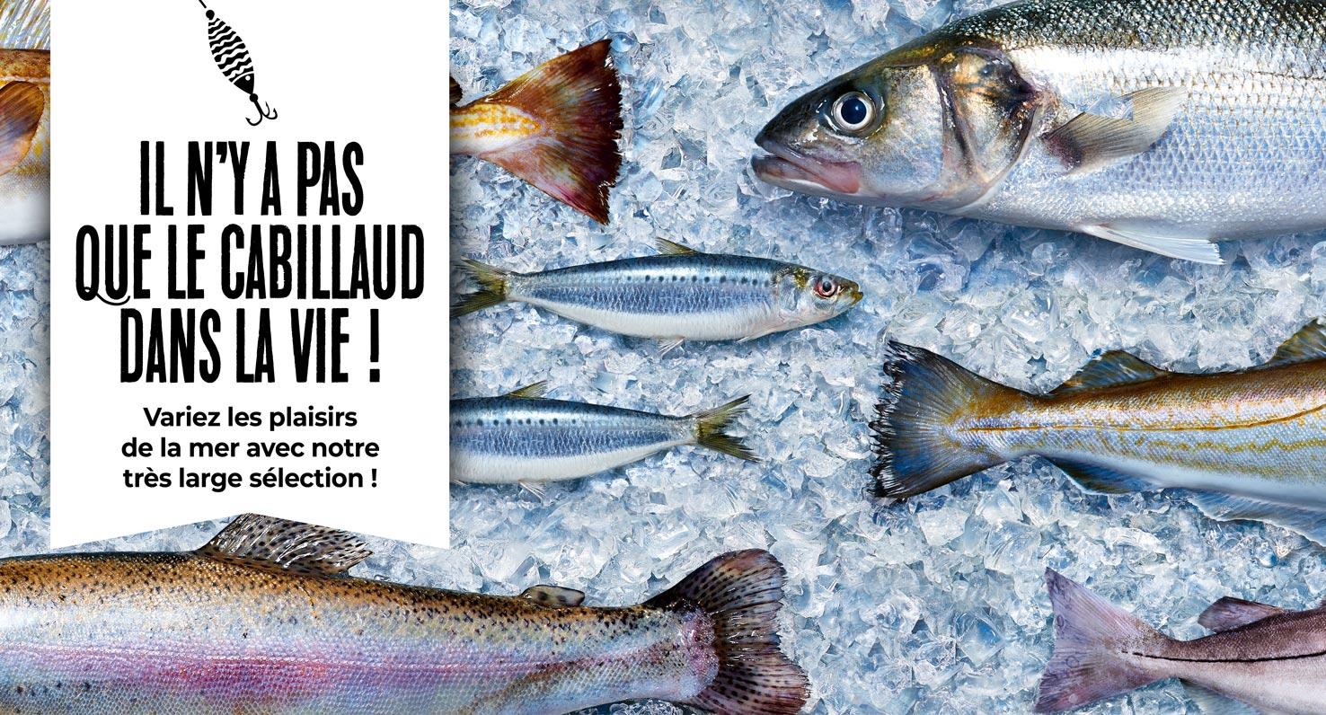 Variez les plaisirs de la mer avec la très large sélection de poissons de la Maison Thiriet !