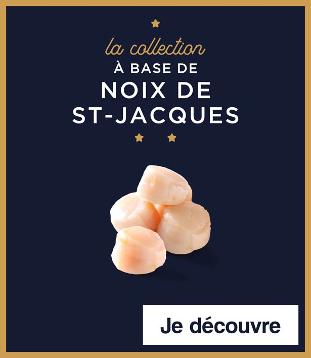 La collection à base de noix de Saint-Jacques