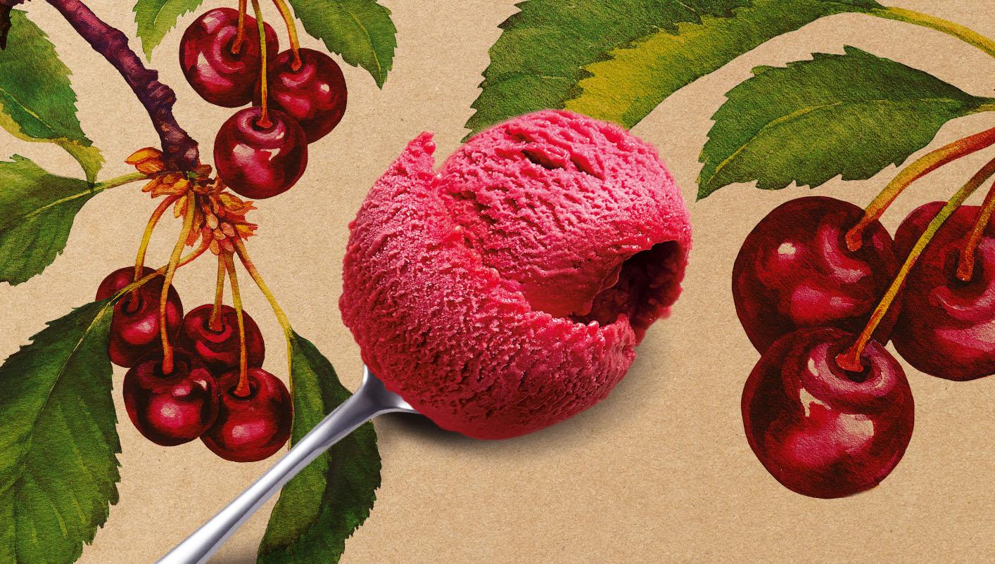 Sorbet Plein Fruit Griotte