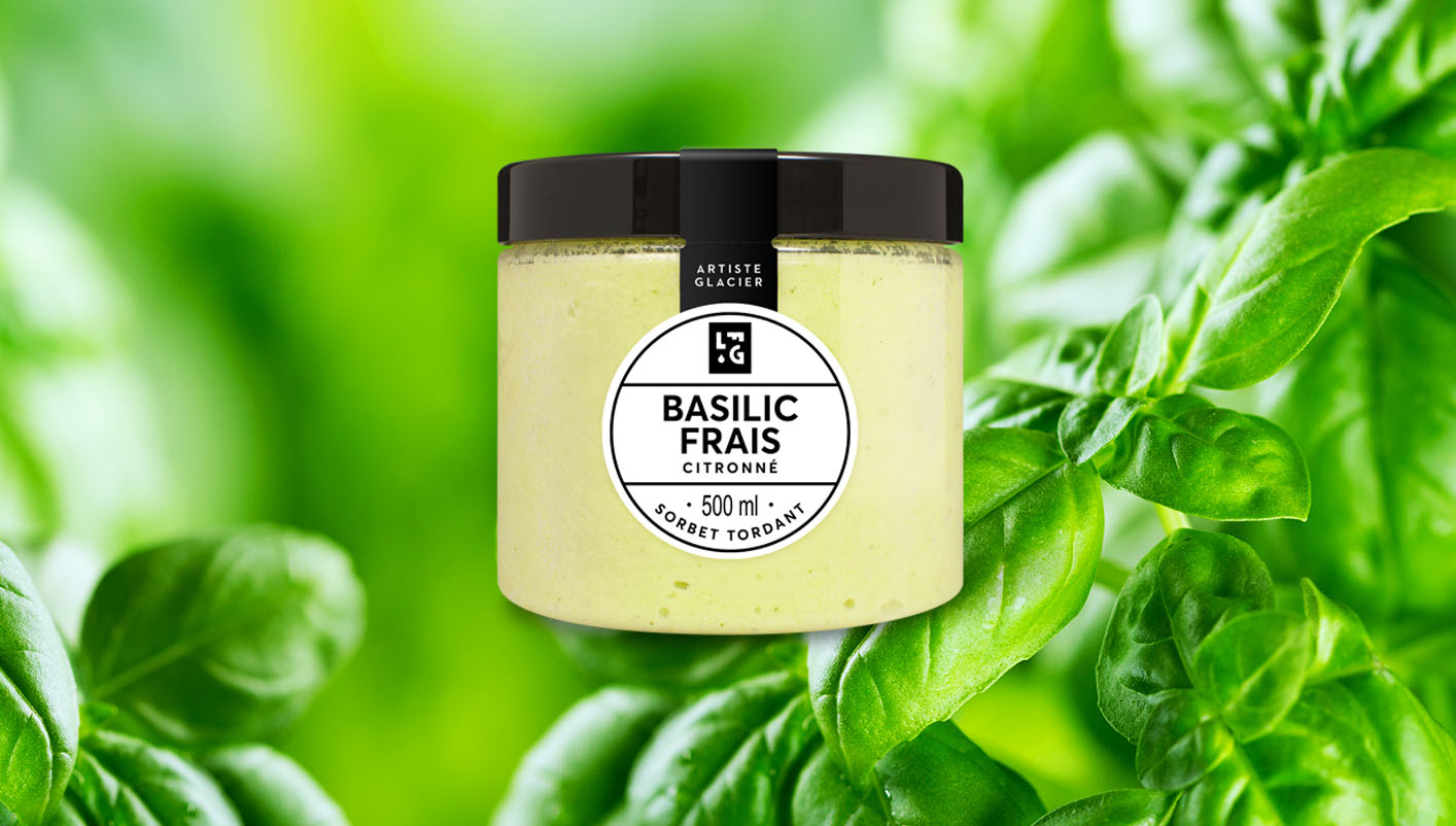 Sorbet artisanal basilic frais citronné