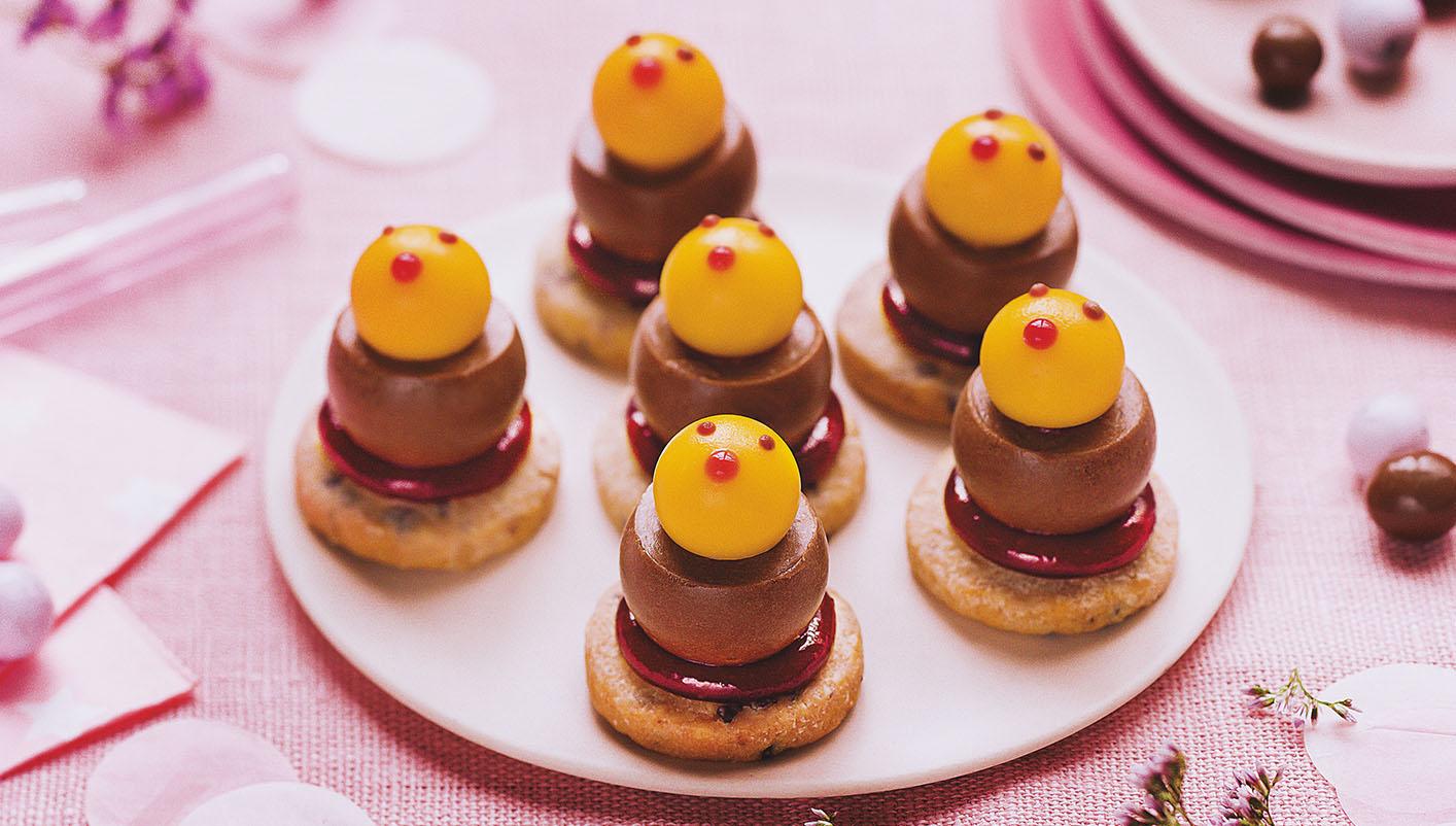 6 Mini poussins chocolat, mangue passion, framboise