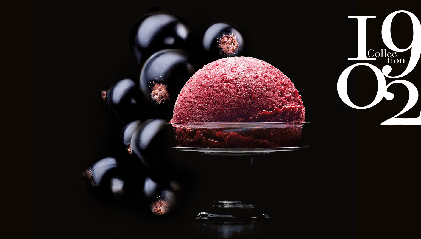 Sorbet Plein Fruit Cassis Noir de Bourgogne Collection 1902
