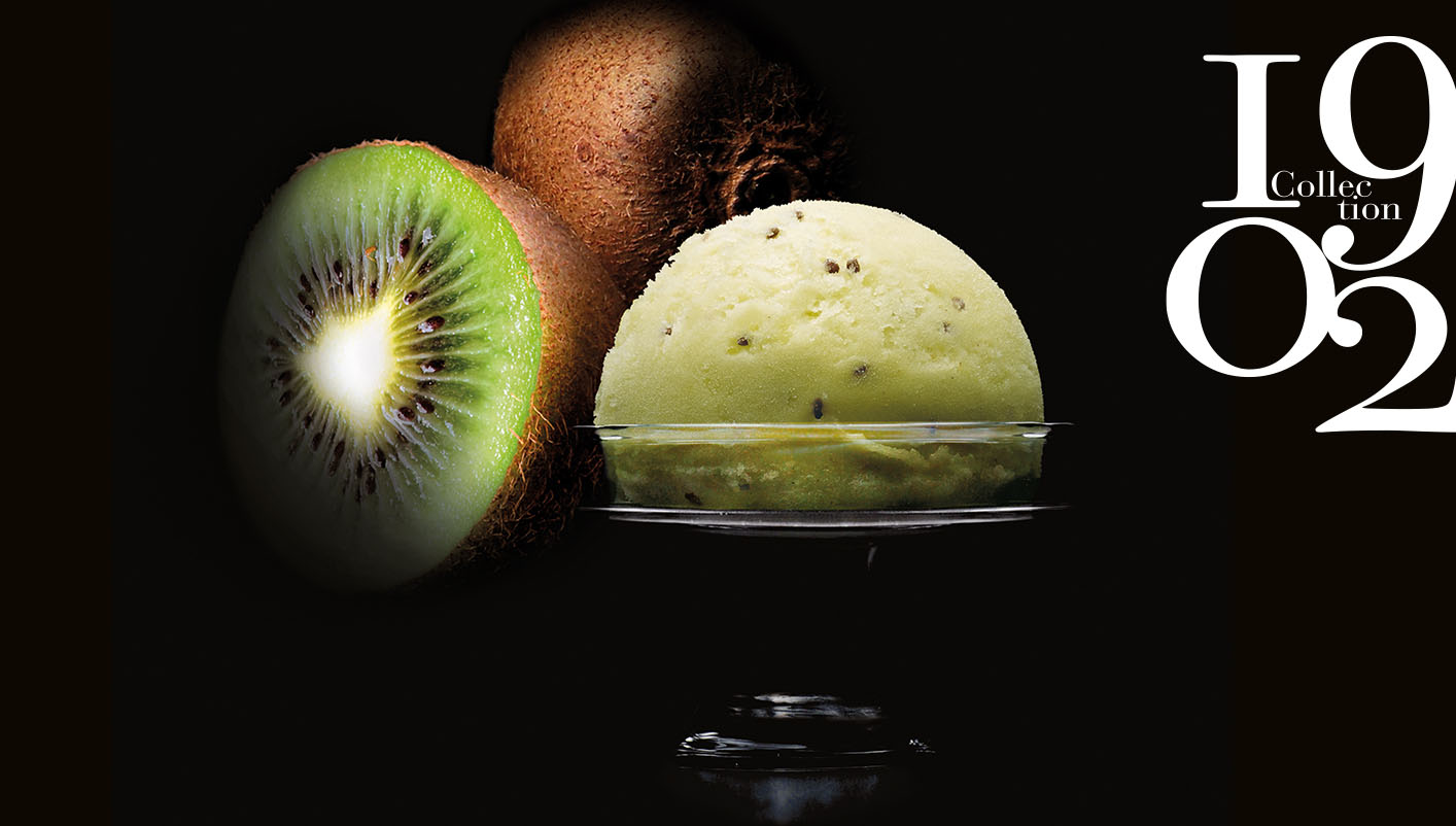 Sorbet Plein Fruit Kiwi de l'Adour IGP* Collection 1902