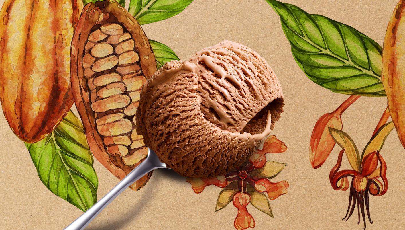 Crème glacée chocolat au lait