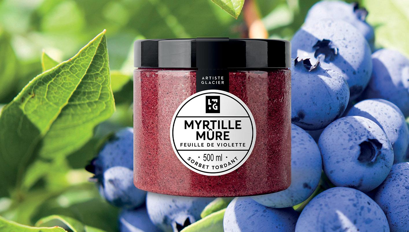 Sorbet plein fruit artisanal myrtille mûre et violette