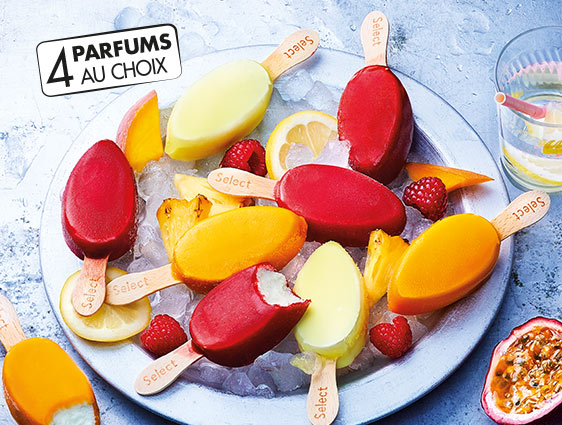 Bâtonnets glacés - Select Mini Frozen Yogurt et fruits assortis
