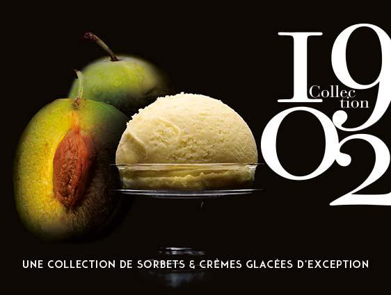 Crèmes glacés et sorbets - Sorbet Prune Reine Claude du Quercy Label Rouge