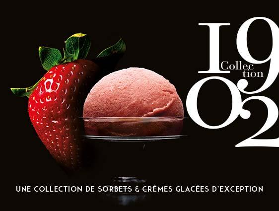 Crèmes glacés et sorbets - Sorbet Fraise de Dordogne
