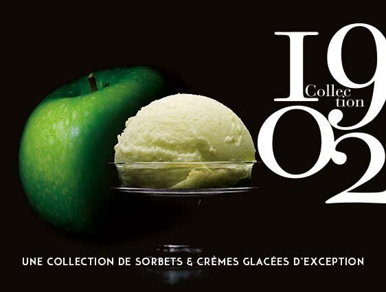 Crèmes glacés et sorbets - Sorbet Pomme Granny Smith d'Auvergne Rhône - Alpes