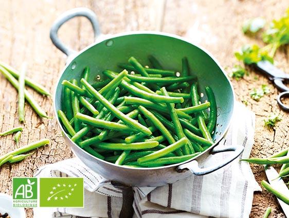 Légumes bio - Haricots verts très fins biologiques