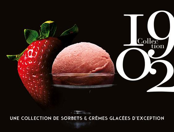 Desserts glacés - Sorbets Fraise de Dordogne