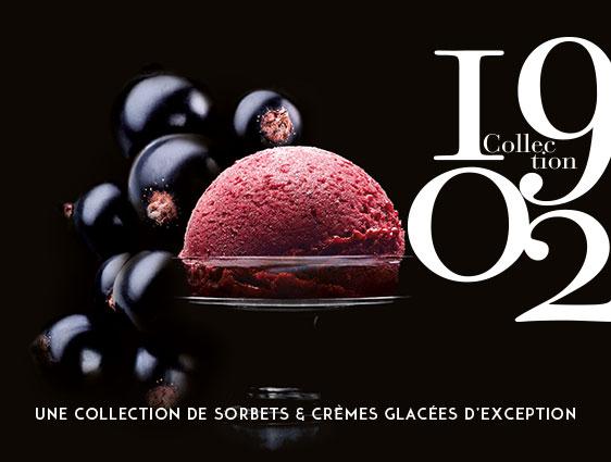 Bac de glace Sorbet Cassis Noir de Bourgogne