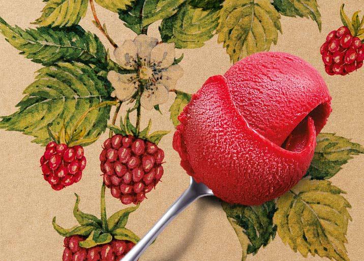 Sorbet Plein Fruit framboise