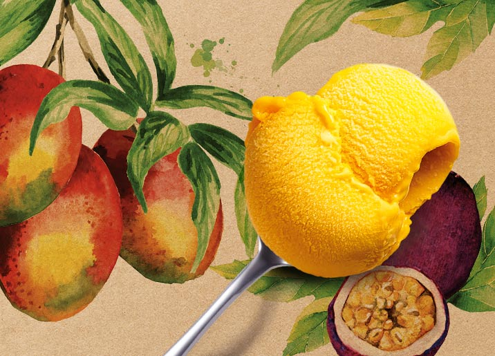 Sorbet Plein Fruit Mangue - Passion