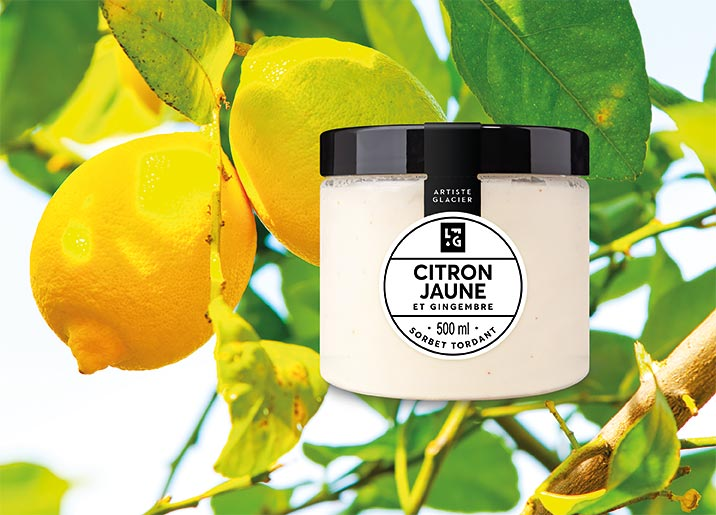 Sorbet Plein Fruit Citron jaune et gingembre