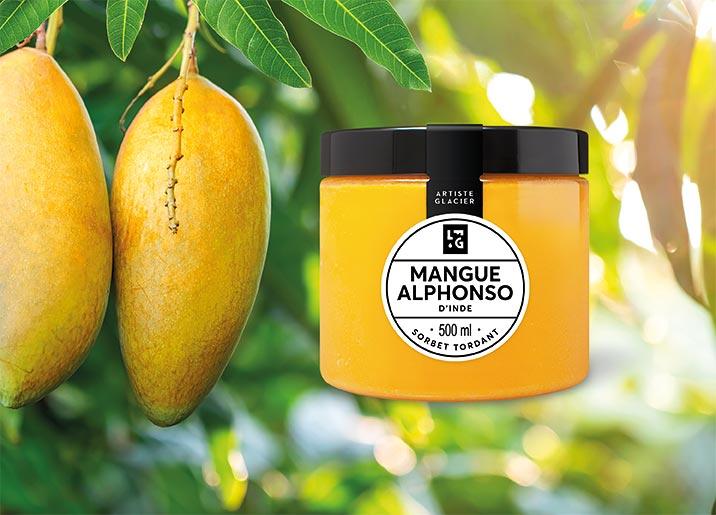 Sorbet Plein Fruit Mangue Alphonso d'Inde