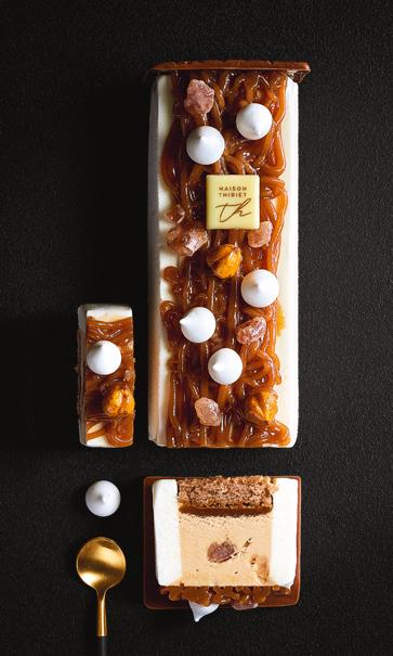 Desserts glacés - Entremets glacé marron